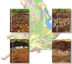 characteristics of brown earth soils Characteristics of brown earth soils in ireland: colour brown in colour due to:  presence of humus which makes it appear dark action.
